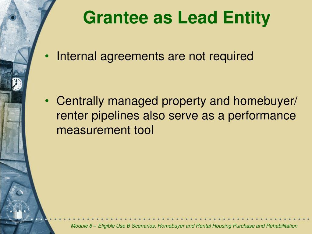Grantee as Lead Entity