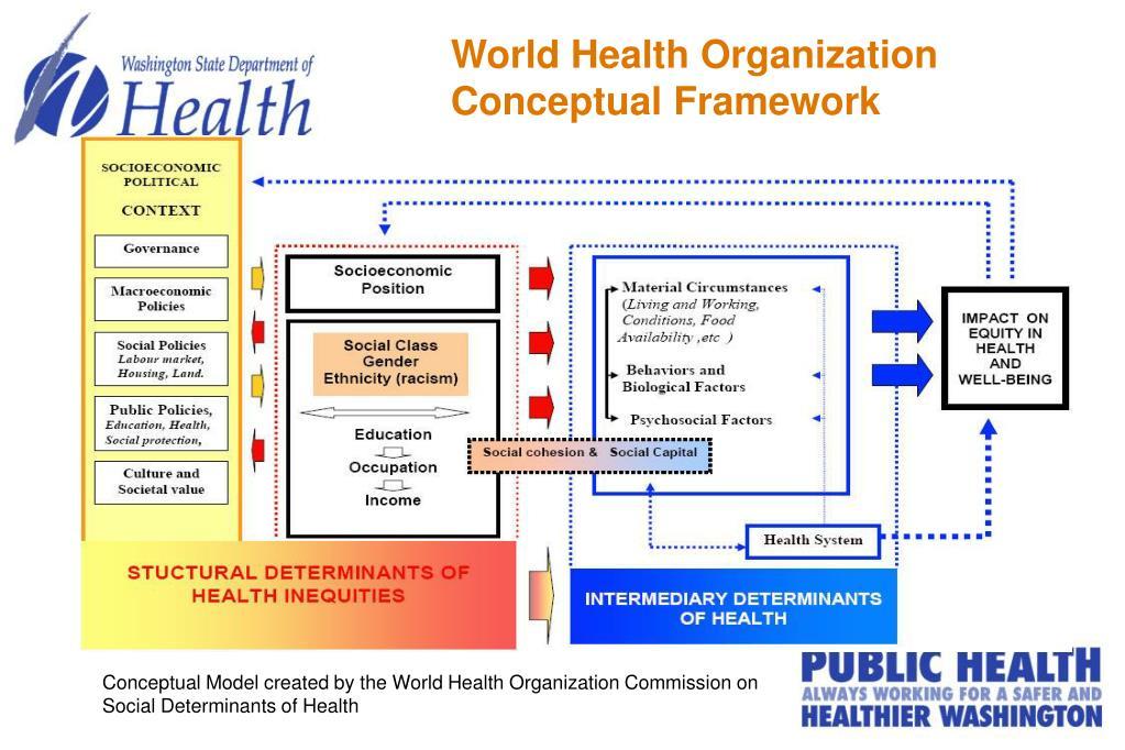 World Health Organization Conceptual Framework