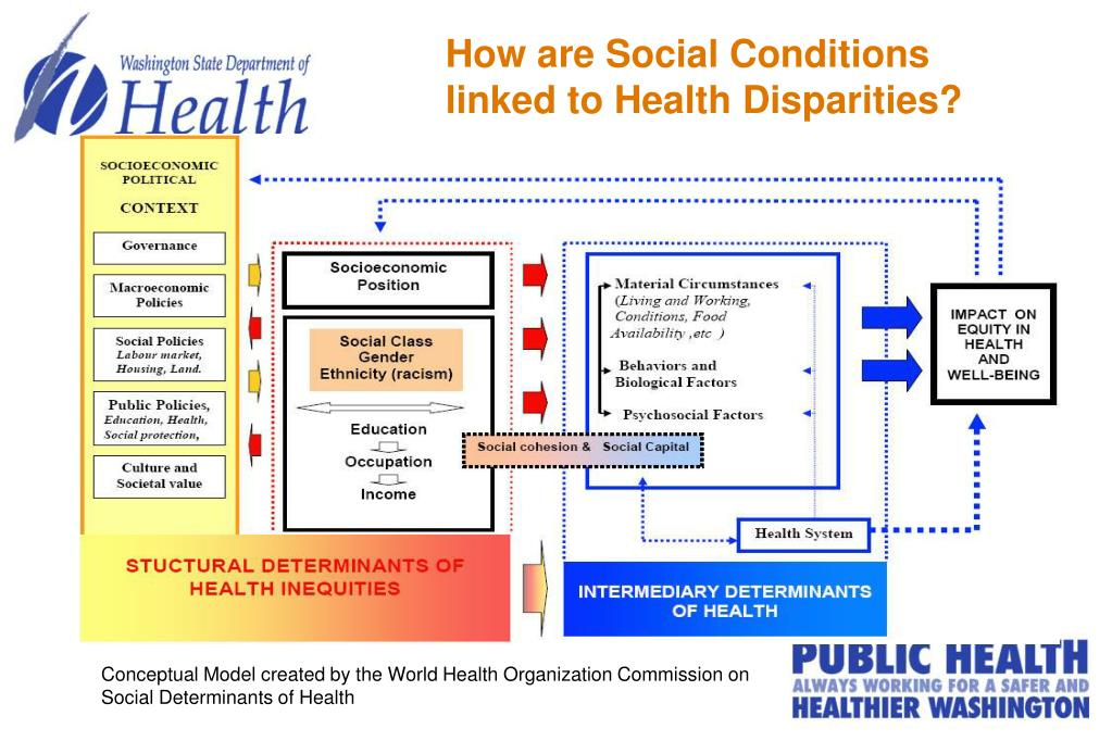 How are Social Conditions linked to Health Disparities?