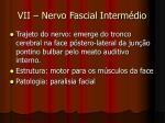 vii nervo fascial interm dio