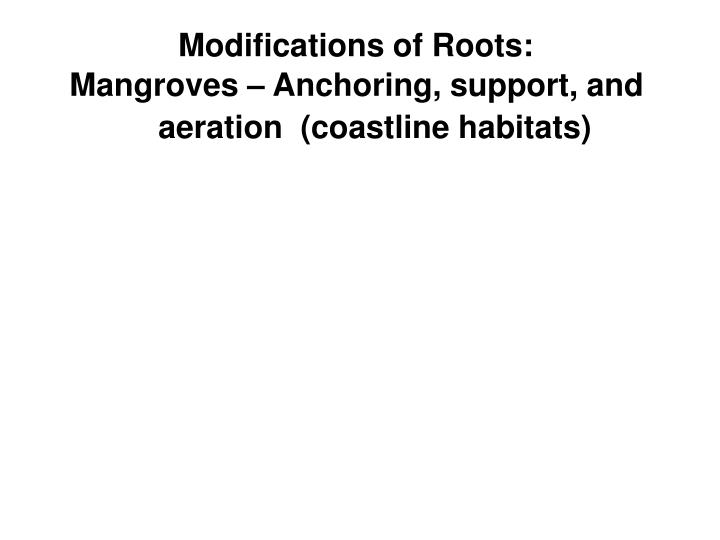 Modifications of Roots: