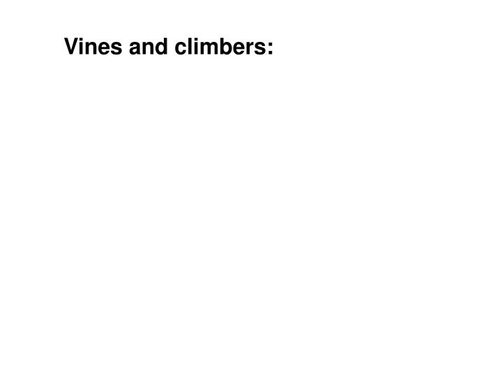 Vines and climbers: