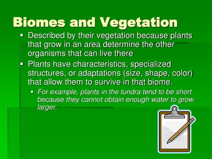 Biomes and Vegetation