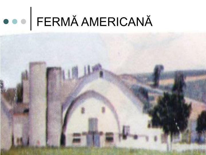 FERMĂ AMERICANĂ