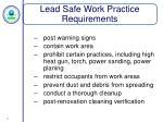 lead safe work practice requirements