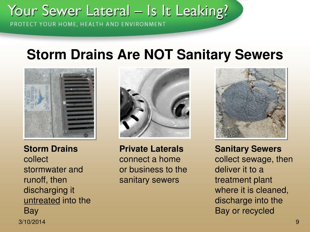 Storm Drains Are NOT Sanitary Sewers