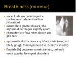 breathiness murmur