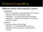 pulmonic lung am 3