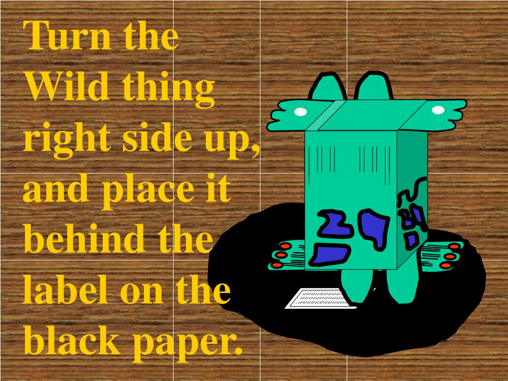 Turn the Wild thing right side up, and place it behind the label on the black paper.