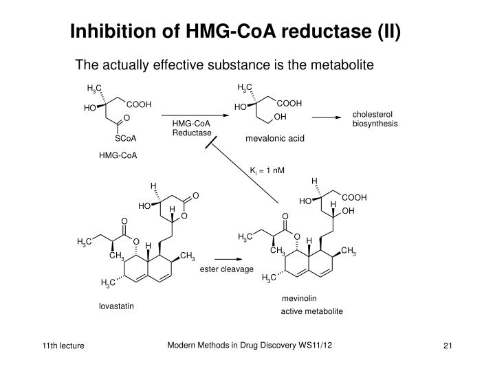 Inhibition of HMG-CoA reductase (II)