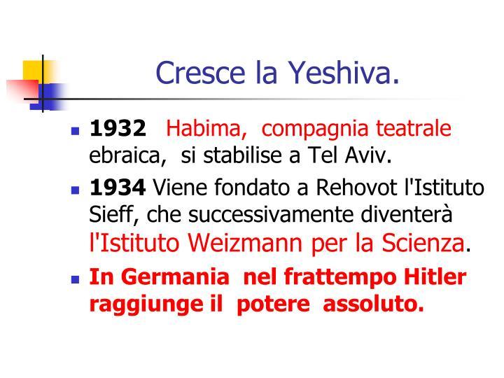 Cresce la Yeshiva.