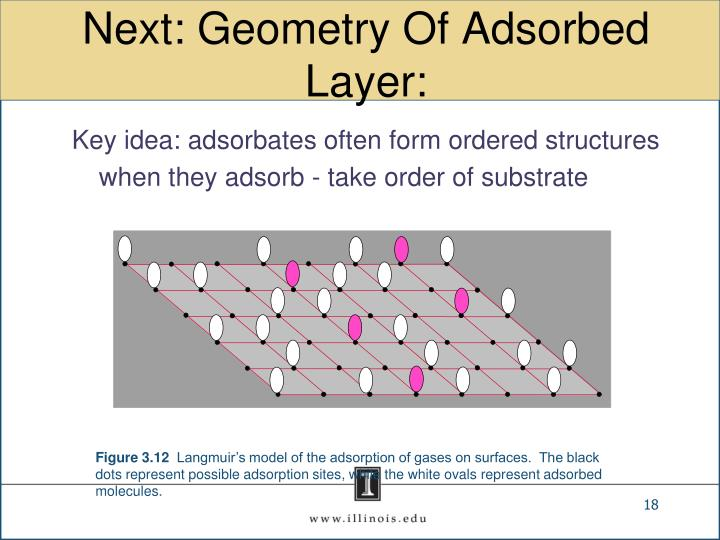 Next: Geometry Of Adsorbed Layer: