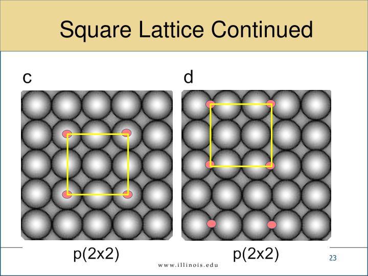 Square Lattice Continued