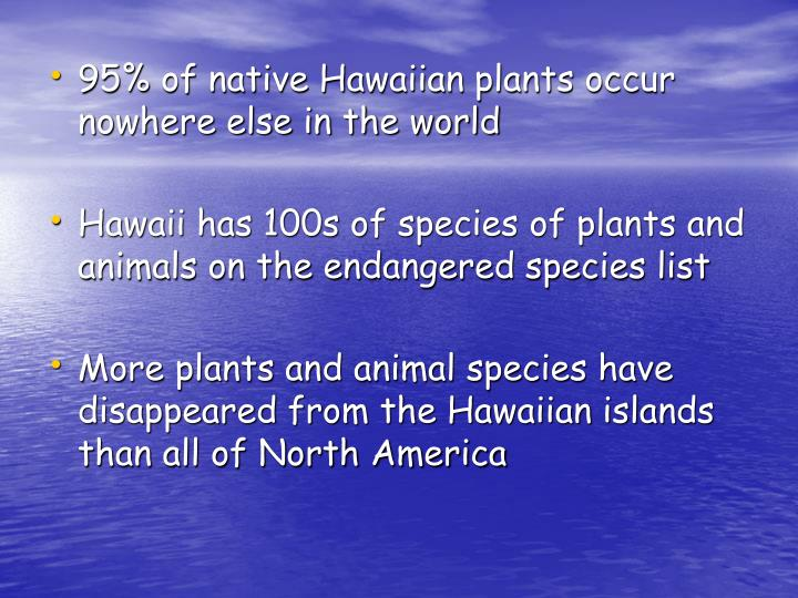 95% of native Hawaiian plants occur nowhere else in the world