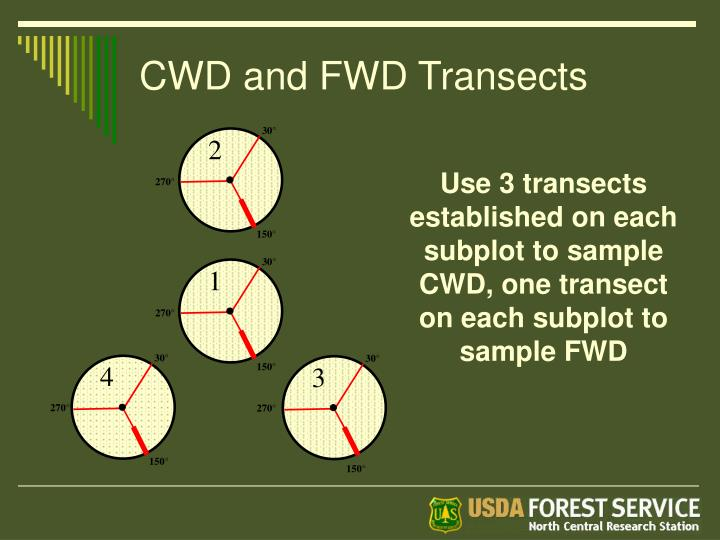 CWD and FWD Transects