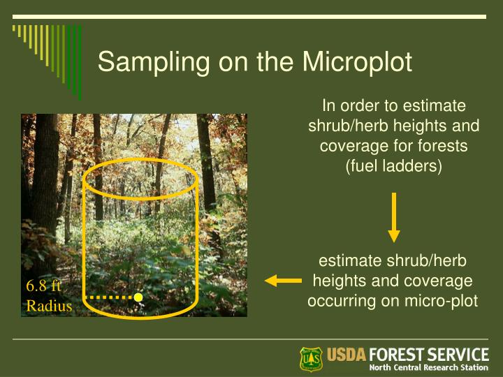 Sampling on the Microplot