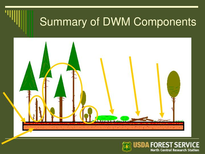 Summary of DWM Components