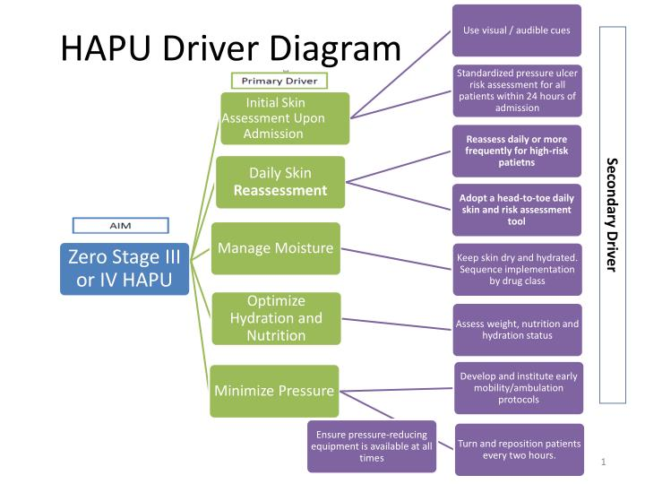 Ppt - Hapu Driver Diagram Powerpoint Presentation  Free Download
