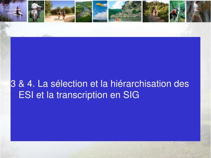 3 & 4. La sélection et la hiérarchisation des ESI et la transcription en SIG