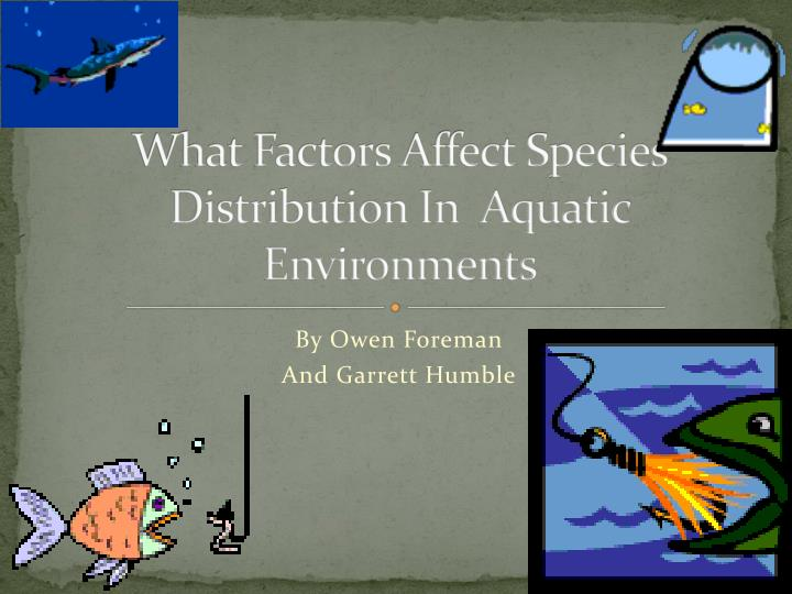 What factors affect species distribution in aquatic environments