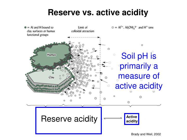 Reserve vs. active acidity