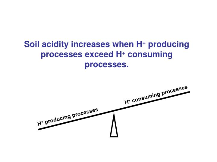 Soil acidity increases when H