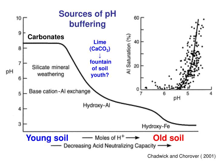 Sources of pH buffering