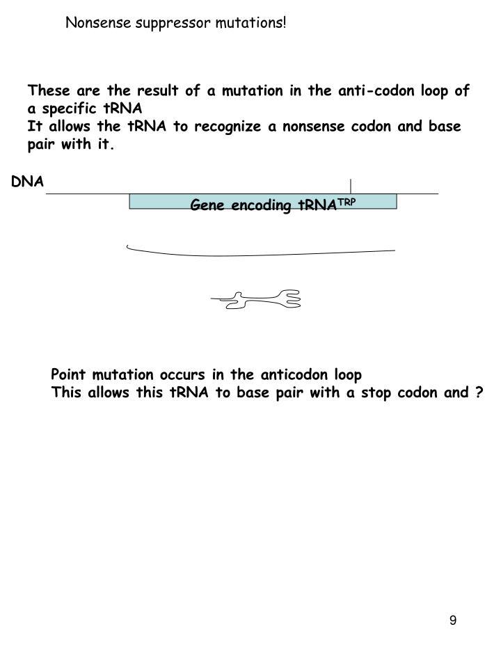 Nonsense suppressor mutations!