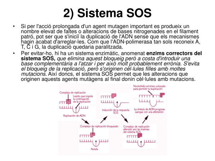 2) Sistema SOS