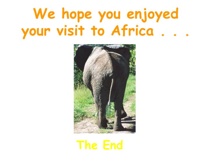 We hope you enjoyed    your visit to Africa . . .
