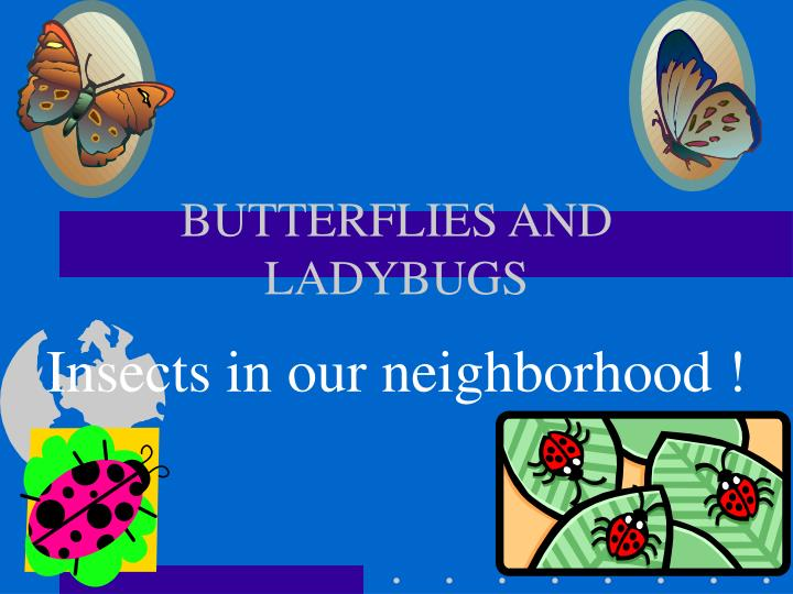 butterflies and ladybugs n.