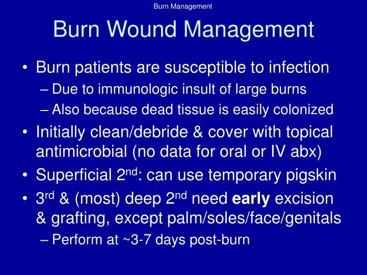Burn Wound Management