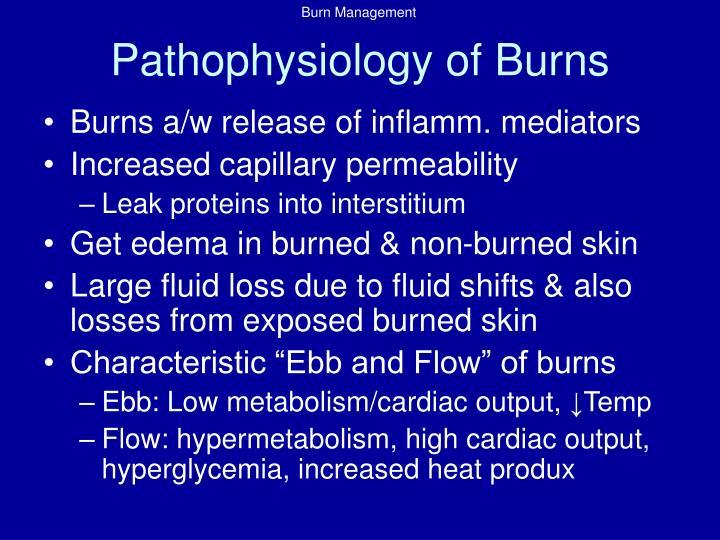 Pathophysiology of Burns
