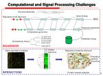 computational and signal processing challenges1