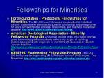 fellowships for minorities