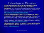 fellowships for minorities1