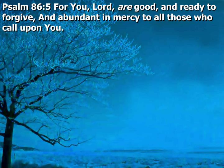 Psalm 86:5 For You, Lord,