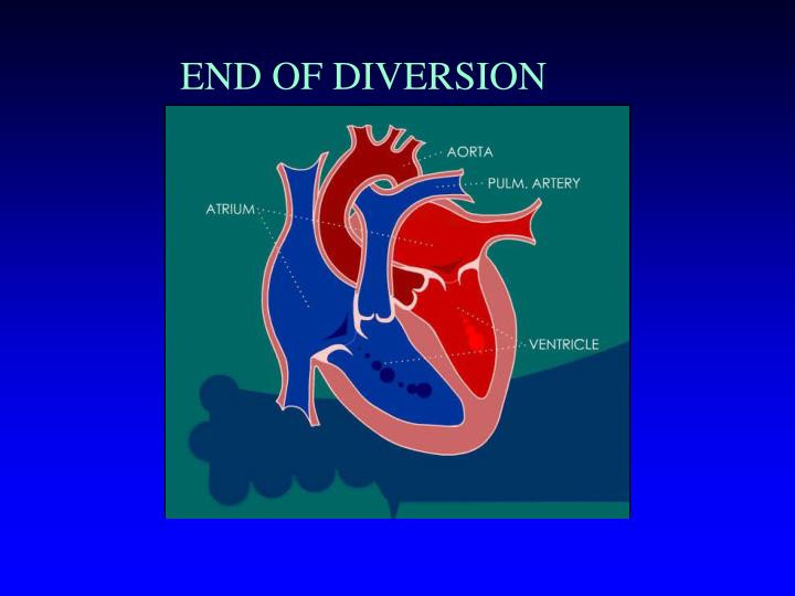 END OF DIVERSION
