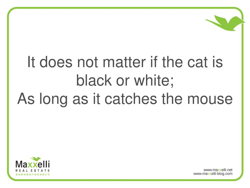 It does not matter if the cat is