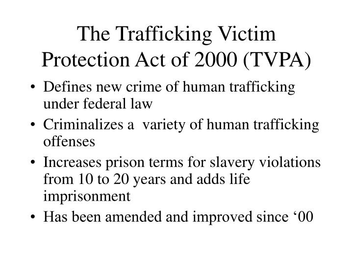 human trafficking reaction paper When we hear the phrase human trafficking, we often think of movement—that people are being trafficked, moved around, perhaps even from country to country.