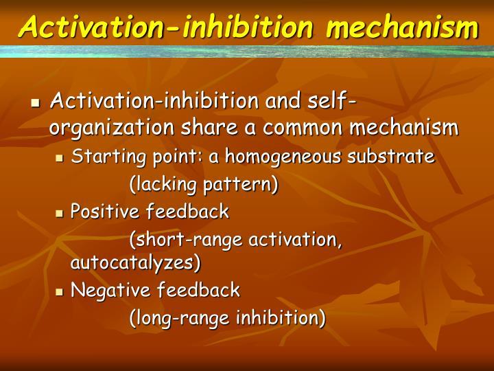 Activation-inhibition mechanism