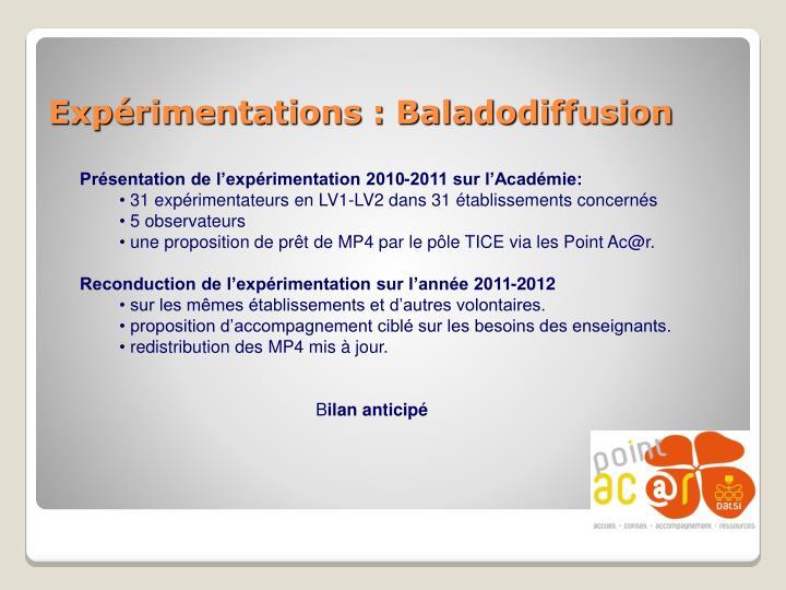 Présentation de l'expérimentation 2010-2011 sur l'Académie: