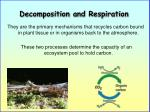 decomposition and respiration