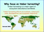 why focus on timber harvesting