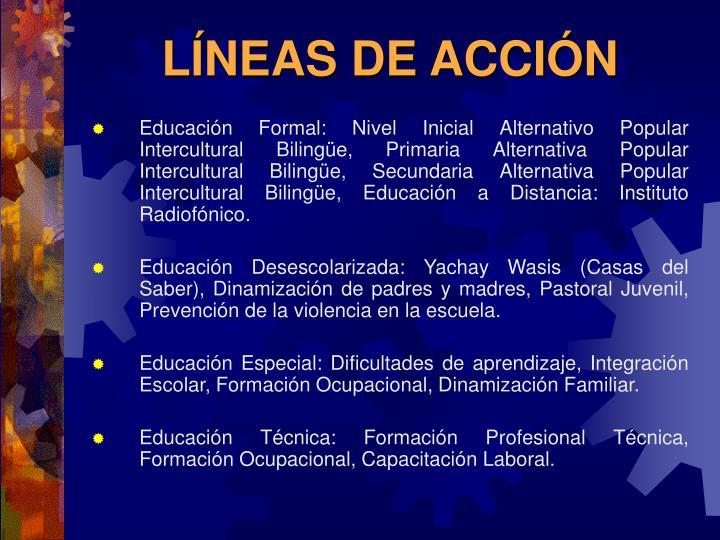 LÍNEAS DE ACCIÓN
