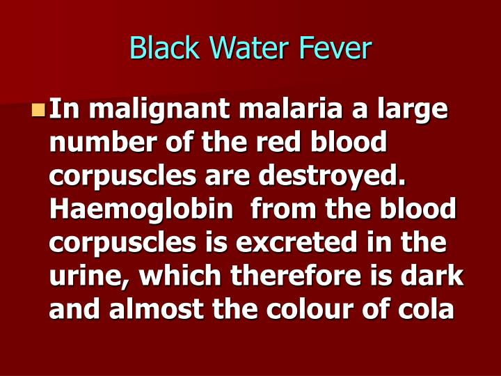 Black Water Fever