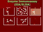enzyme immunoassay eia elisa