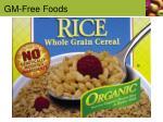 gm free foods