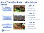 more than one india with unique needs
