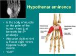 hypothenar eminence